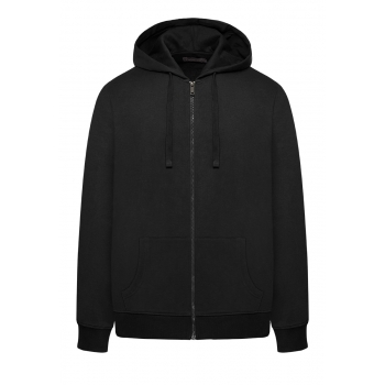 Mens hooded zip sweatshirt