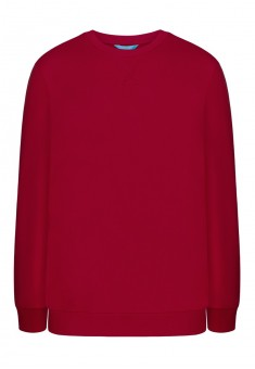 Jersey pullover for men red