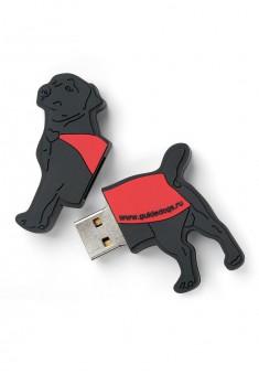 USBнакопитель Солнечный пес