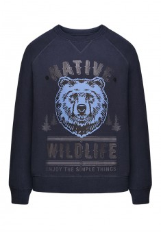 Mens sweatshirt with a print