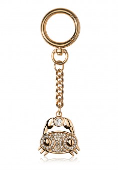 Cancer Key Chain