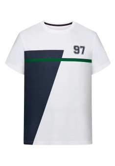 Mens Printed Tshirt multicolor