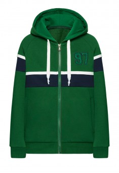 Boys Hooded Sweatshirt green